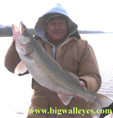 another trophy Red River walleye